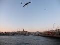istanbul-galatabruecke (1)