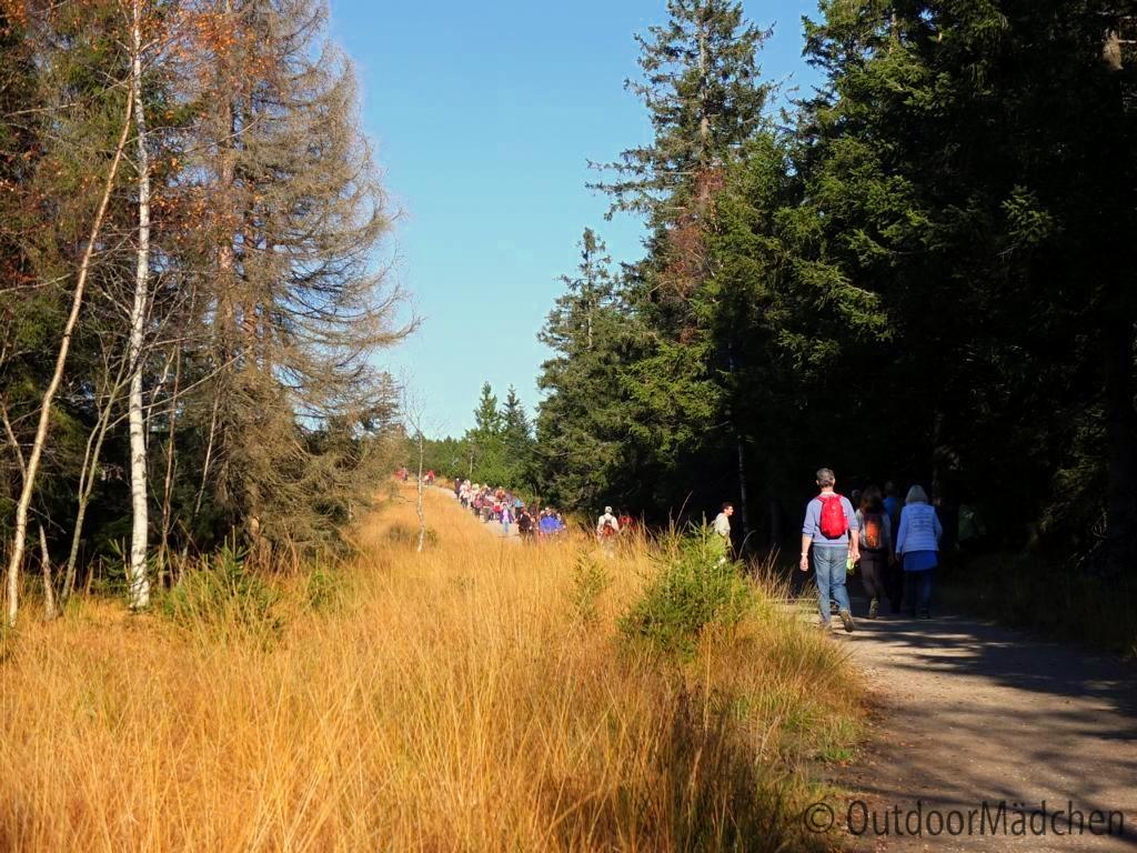 bannwald-tour-schwarzwald (13)