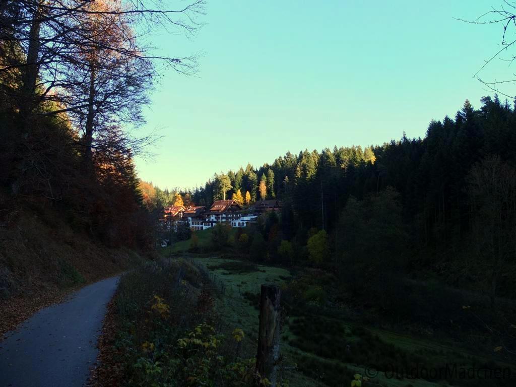 bannwald-tour-schwarzwald (23)