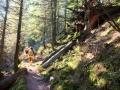 bannwald-tour-schwarzwald (3)
