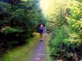 bannwald-tour-schwarzwald (4)