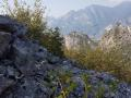 Wanderung-Bosco-Caproni-Gardasee-Outdoormaedchen-15