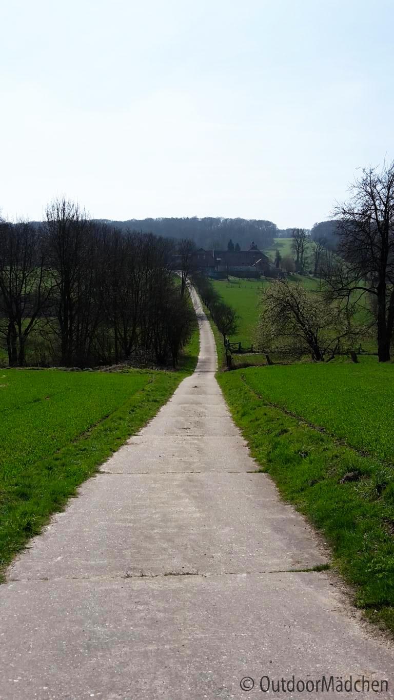 Premiumwanderweg-Canyonblick-Teutoschleifen-NRW-outdoormaedchen-19