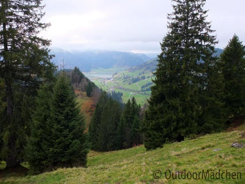 Wanderung-Chli-Aubrig-ab-Euthal-Schwyz-5
