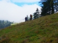 Wanderung-Chli-Aubrig-ab-Euthal-Schwyz-3