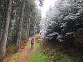 Wanderung-Chli-Aubrig-ab-Euthal-Schwyz-8