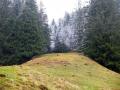 Wanderung-Chli-Aubrig-ab-Euthal-Schwyz6