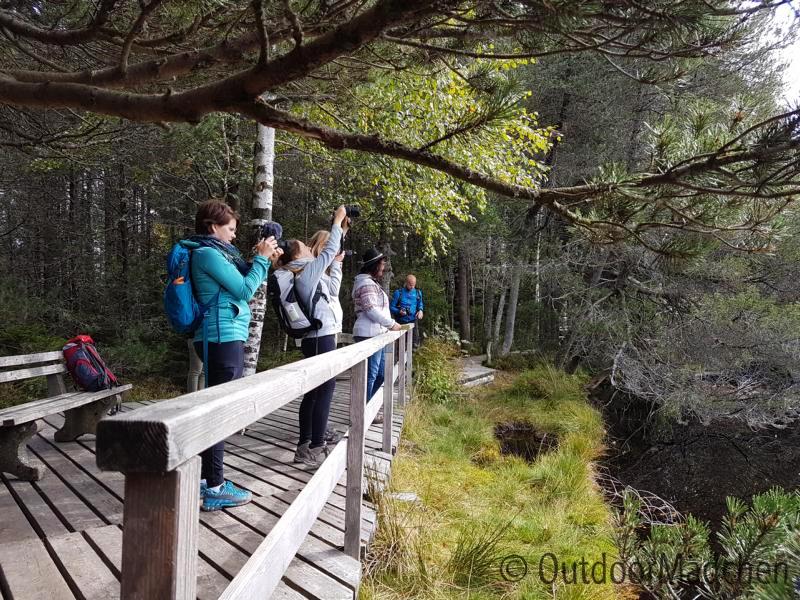 E-MTB-und-Wanderung-Blindensee-Schwarzwald-outdoormaedchen (11)