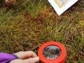 E-MTB-und-Wanderung-Blindensee-Schwarzwald-outdoormaedchen (9)
