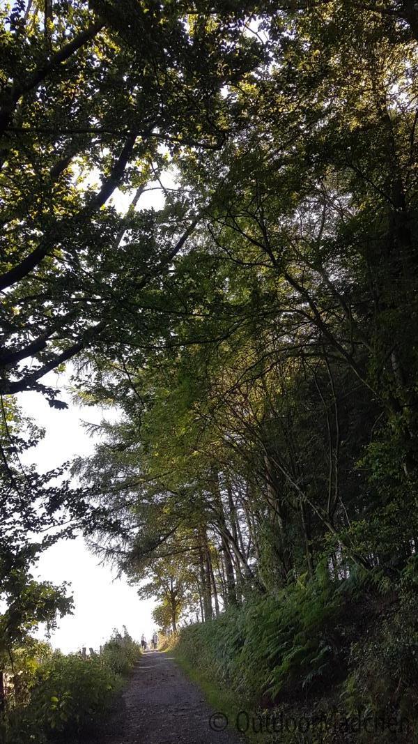 Elfringhauser schweiz wandern
