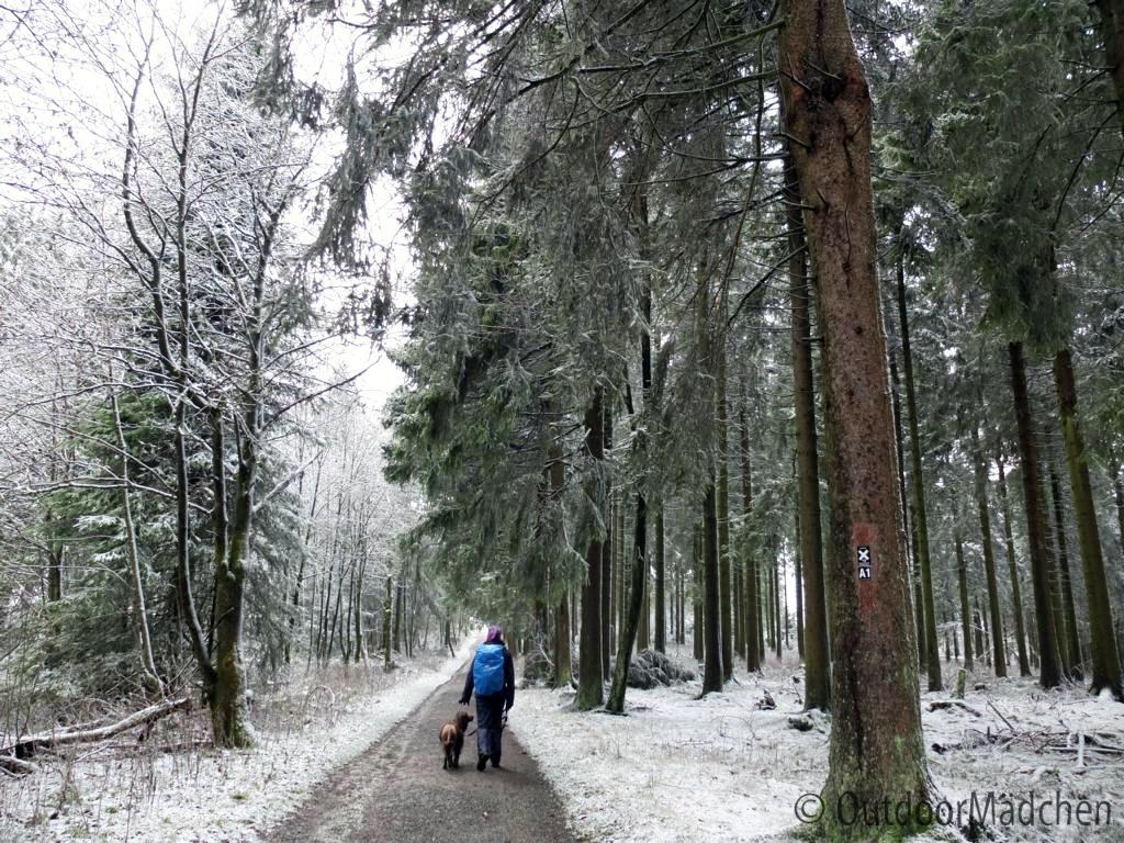 Wanderung-Sauerland-Kahler-Asten (17)