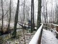 Wanderung-Sauerland-Kahler-Asten (11)