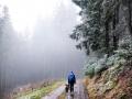 Wanderung-Sauerland-Kahler-Asten (3)