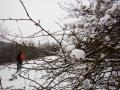 Lenneschleife-Wanderung-Iserlohn-Outdoormaedchen-1