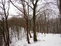 Lenneschleife-Wanderung-Iserlohn-Outdoormaedchen-11