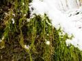 Lenneschleife-Wanderung-Iserlohn-Outdoormaedchen-25