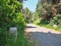 leichte-Wanderung-Monte-Brione-Gardasee (15)