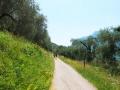 leichte-Wanderung-Monte-Brione-Gardasee (17)