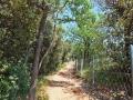 leichte-Wanderung-Monte-Brione-Gardasee (7)