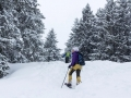 Schuhe-fuer-Schneeschuhe-c-Nadine-Ormo