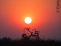 Sonnenuntergang-Namibia-Afrika
