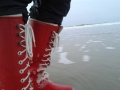 Nordsee-im-Winter (3)