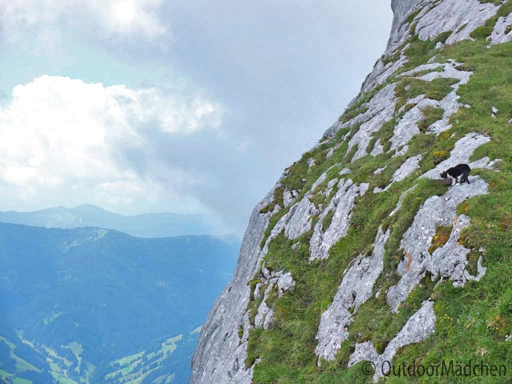 Wanderung-Passauer-Huette (11)