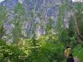 Wanderung-Passauer-Huette (2)