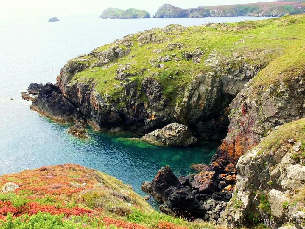 Pembrokeshire-Coast-Path-St-Davids-Wales (17)