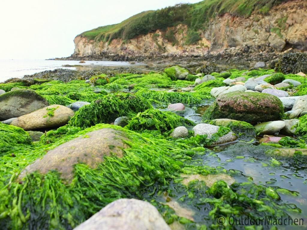 Pembrokeshire-Coast-Path-St-Davids-Wales (23)