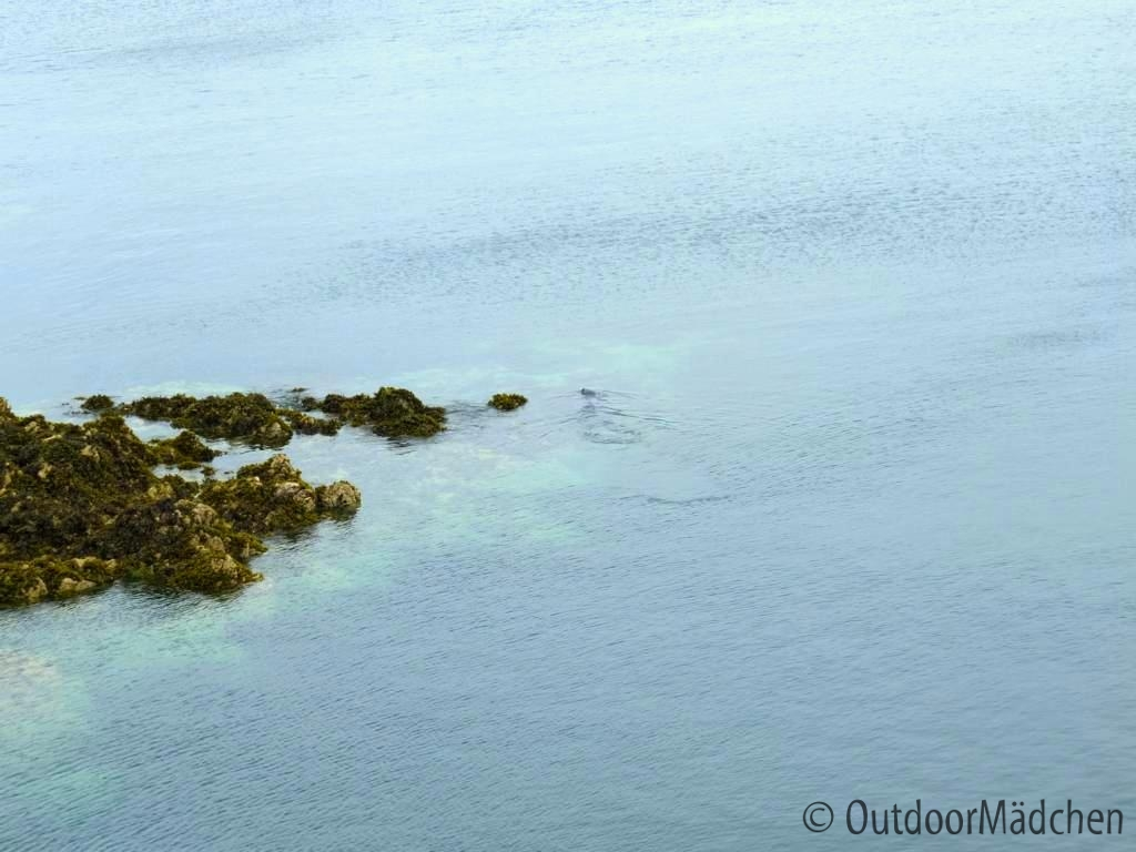 Pembrokeshire-Coast-Path-St-Davids-Wales (28)