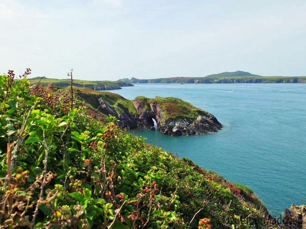 Pembrokeshire-Coast-Path-St-Davids-Wales (4)