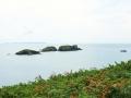 Pembrokeshire-Coast-Path-St-Davids-Wales (21)