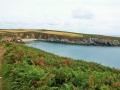 Pembrokeshire-Coast-Path-St-Davids-Wales (22)