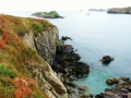Pembrokeshire-Coast-Path-St-Davids-Wales (26)