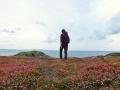 Pembrokeshire-Coast-Path-St-Davids-Wales (27)