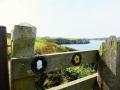 Pembrokeshire-Coast-Path-St-Davids-Wales (5)
