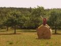 hauptsache-draussen-wandern (1)