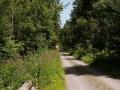 hauptsache-draussen-wandern (8)