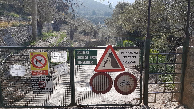 einfache-Wanderung-Sa-Foradada-Mallorca-16