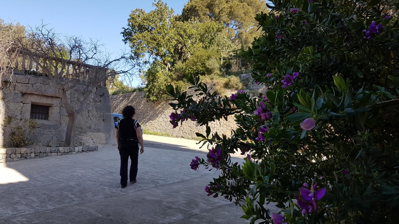 einfache-Wanderung-Sa-Foradada-Mallorca-18