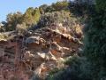 einfache-Wanderung-Sa-Foradada-Mallorca-13