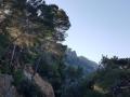 einfache-Wanderung-Sa-Foradada-Mallorca-4