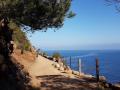 einfache-Wanderung-Sa-Foradada-Mallorca-6