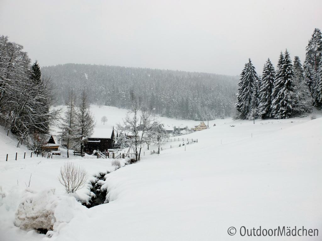 Winterwanderung-Sankenbachsee-Schwarzwald (1)