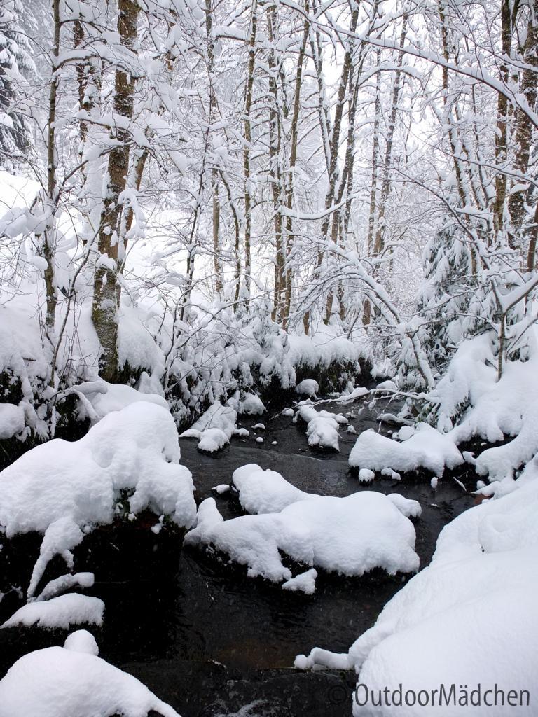 Winterwanderung-Sankenbachsee-Schwarzwald (11)