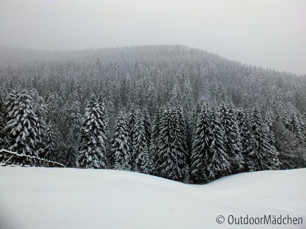 Winterwanderung-Sankenbachsee-Schwarzwald (12)