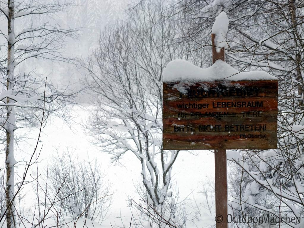 Winterwanderung-Sankenbachsee-Schwarzwald (5)