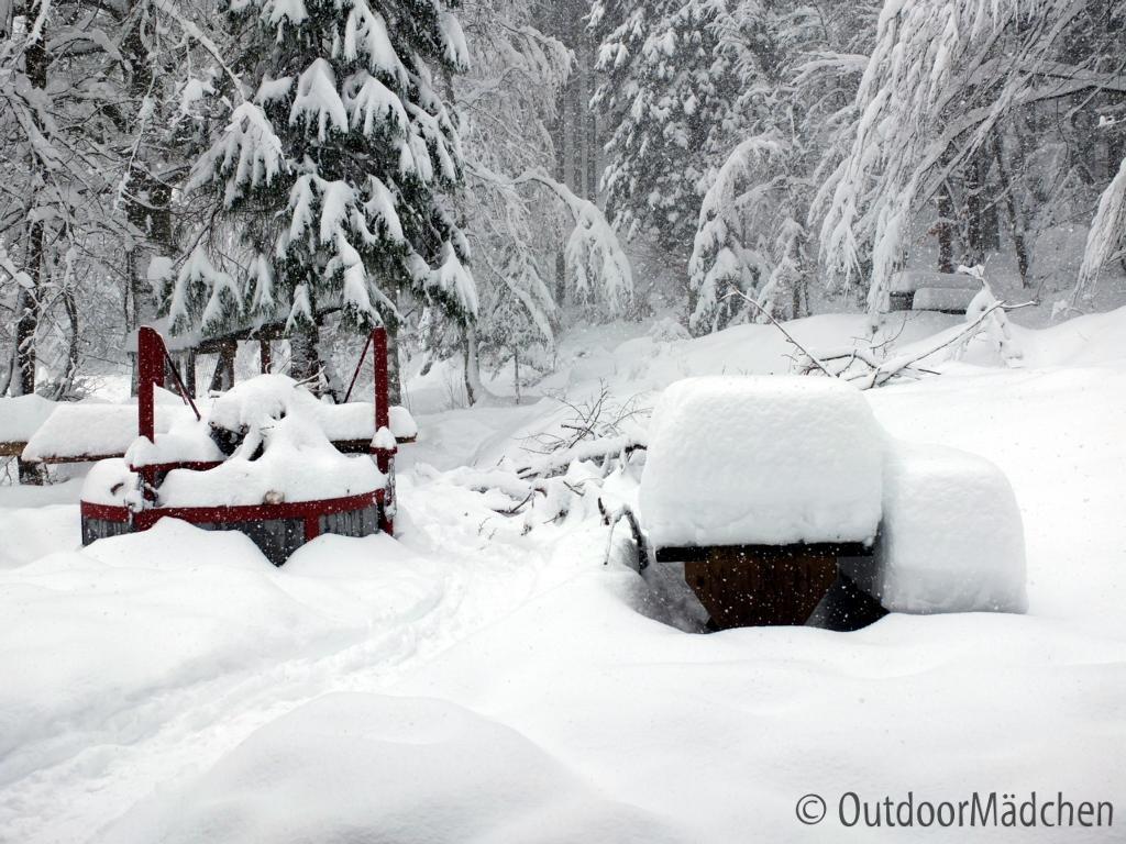 Winterwanderung-Sankenbachsee-Schwarzwald (7)