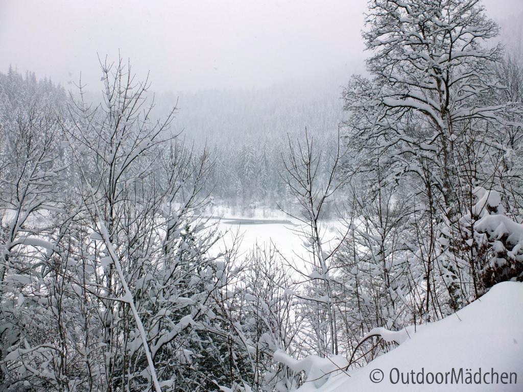 Winterwanderung-Sankenbachsee-Schwarzwald (8)